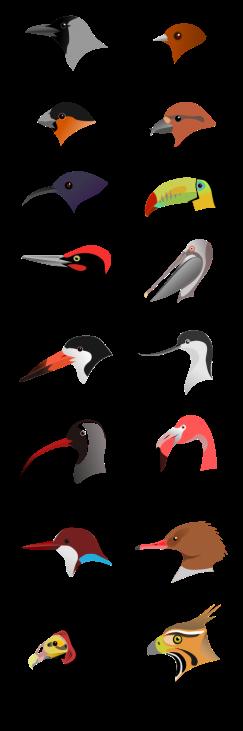 465px-birdbeaksa-svg