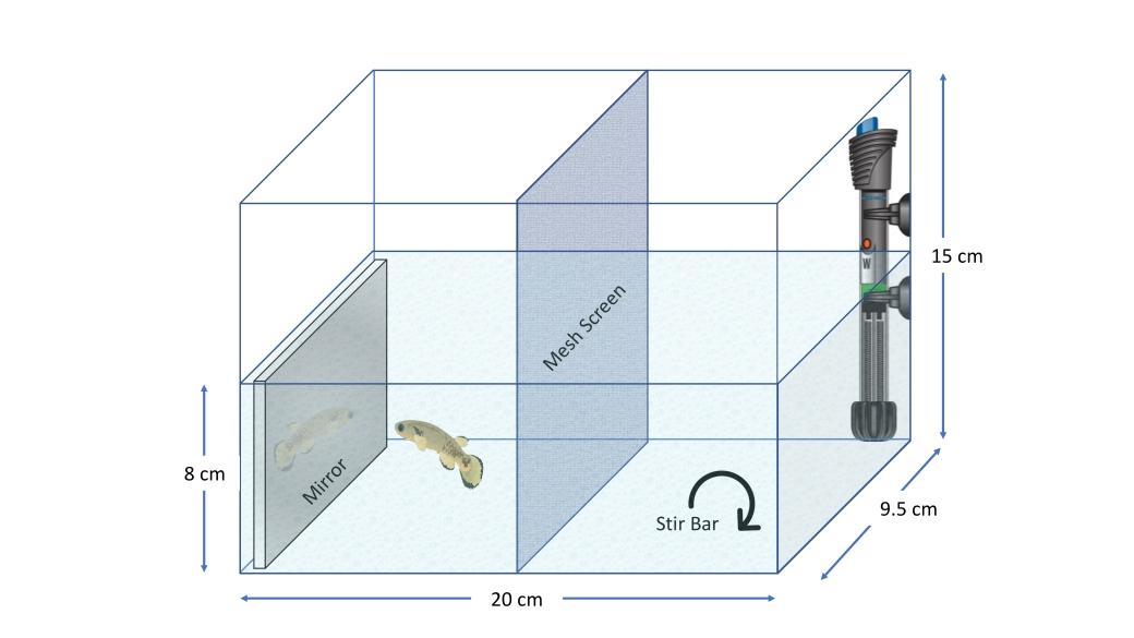 Tank Schematic.jpg